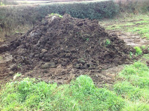 details about horse manure garden fertiliser compost