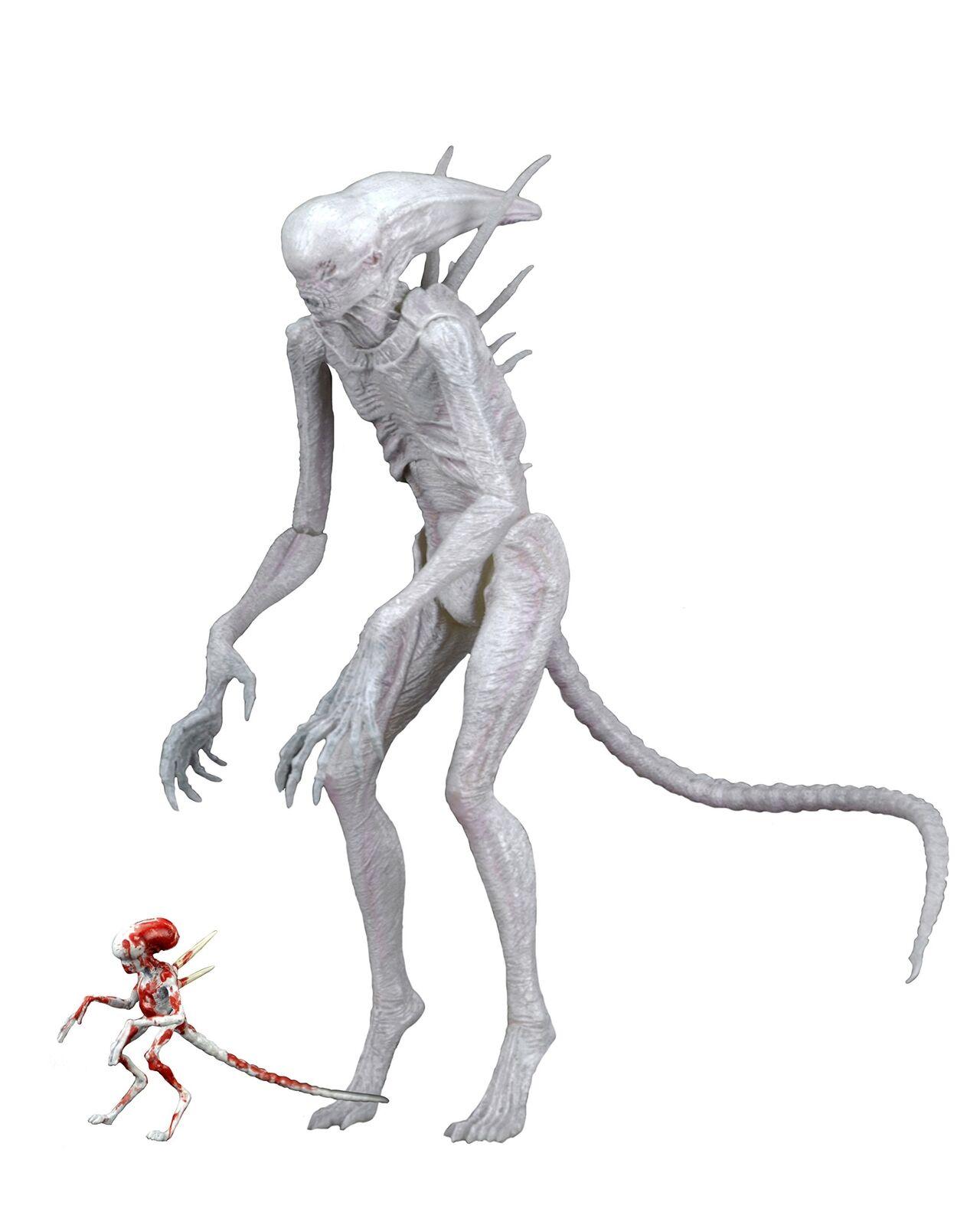 Neomorph (Alien Covenant) 7