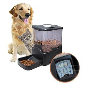 pet feeders automatic watch dog youtube feeder