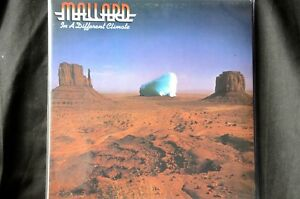 Mallard-In-A-Different-Climate-Beefheart-Magic-Band-12-034-vinyl-LP-New