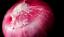 300 Heirloom semences de légumes 6 Variété de jardin Set #3 Emergency Survival Non-OGM
