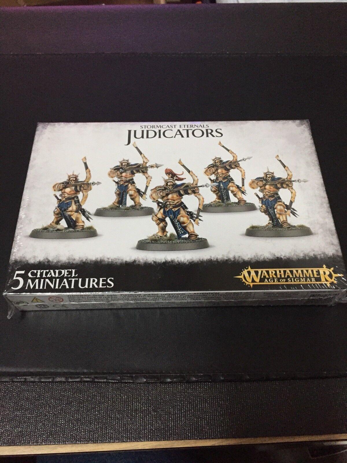 2015 Citadel Warhammer Age of Sigmar Stormcast Eternals Judicators