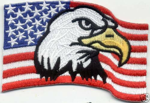 New USA Flag American Eagle fabric Patch Badge