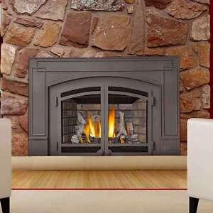 Napoleon Ir3n Ir Series Gas Fireplace Insert 629169047970 Ebay