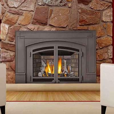 Napoleon Ir3n Ir Series Gas Fireplace Insert 629169047970