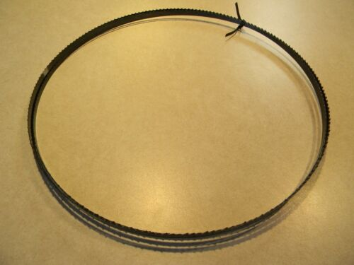 Bandsaw blade 1//4 inch X 105 inch 6 tooth hook 4-28