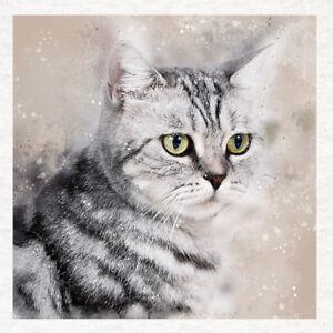 cat silver tabby cat watercolour splatter fabric cushion craft