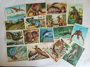 Postcards-of-Dinosaurs-and-ancient-animals-ussr-1983-Greeting-Post-Card