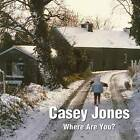 Casey Jones - Where are You? A Winter Tale of a Lost Toy by Pat Preston (Paperback, 2015)