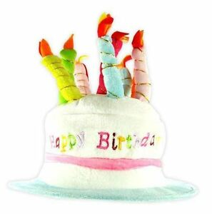 Image Is Loading Novelty Happy Birthday Cake Hat Party Fancy Dress
