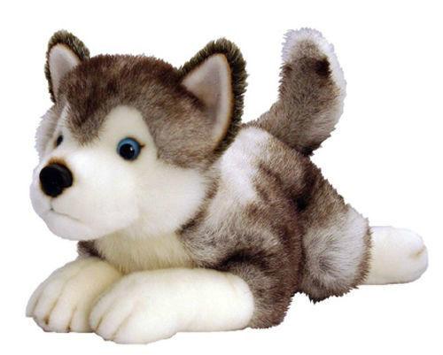 BNWT - Korimco Lil Pups Siberian Husky  Storm  Puppy Plush Toy 50cm 19.68inch