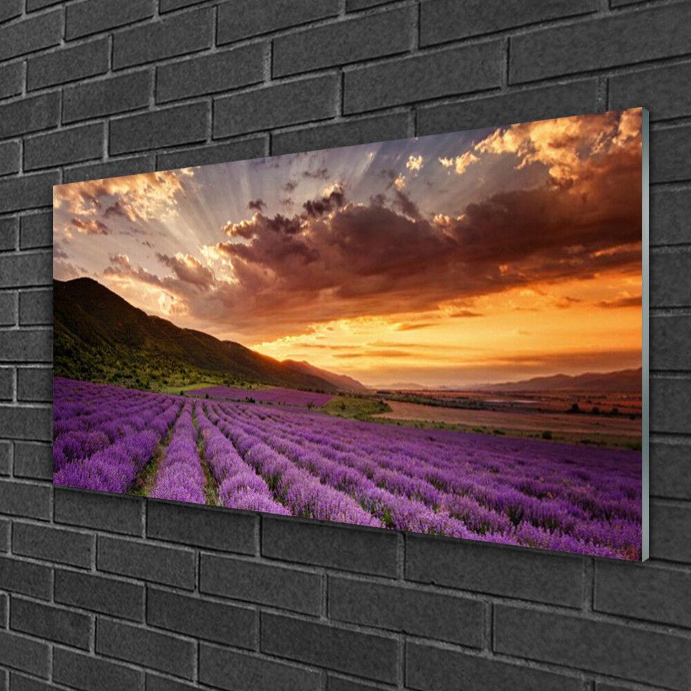 Image sur verre Tableau Impression 100x50 Paysage Montagnes Prairie Fleurs