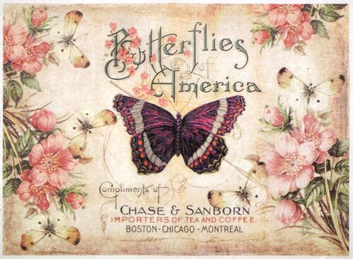 Papel De Arroz-América Mariposas-Para Decoupage Scrapbooking Hoja