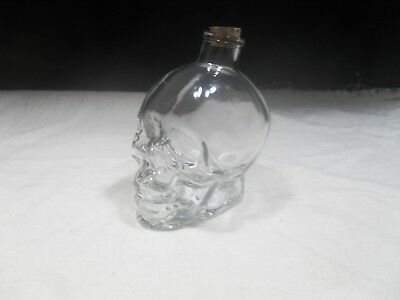 Skull Face Clear Glass Pennies and Dimes Bank