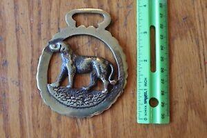 Horse-Medallion-Tack-Brass-Bridle-Saddle-Badge-Ornament-Retriever-Dog-Vintage