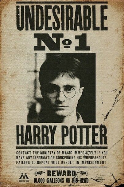 HARRY POTTER POSTER ~ DEATHLY HALLOWS No. 1 UNDESIRABLE 24x36 Movie Wanted