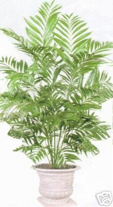4' PHOENIX PALM ARTIFICIAL SILK TREE PLANT BUSH FLOWER FLORAL SAGO ARECA NO POT