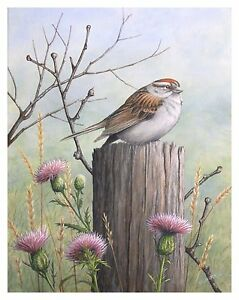Art original acrylic painting wildlife song bird pink flower image is loading art original acrylic painting wildlife song bird pink mightylinksfo