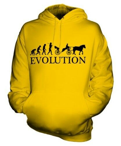 Beförderung Evolution Of Man Unisex Kapuzenpullover Top Geschenk Pferd