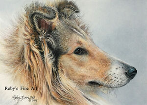 Collie-Dog-Art-Print-034-Collie-034-Giclee-5-034-x-7-034-by-Realism-Artist-Roby-Baer-PSA