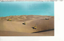 Sand Buggies of the Southwest on Sand Dunes  Chrome Postcard 217