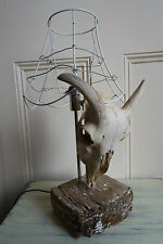 Trophy head on driftwood base, lamp from The Great Interior Design Challenge