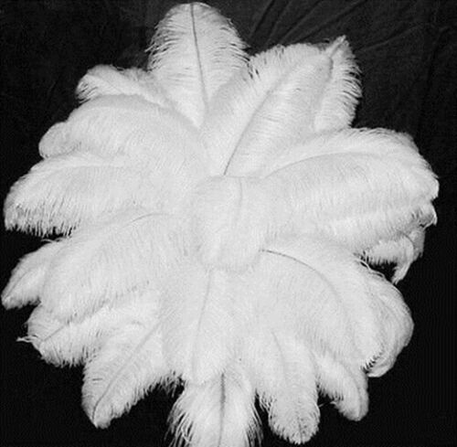 New 10-200 PCS pretty 6-26 inches//15-65cm White ostrich feathers wedding choices
