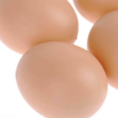 5Pcs Chicken Hen Poultry Faux Fake Plastic Eggs Restaurant Food Model Props