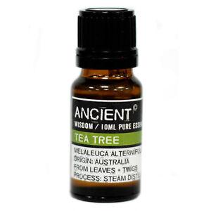 Tea-Tree-Pure-Essential-Oil-10ml-Antiseptic-Immune-Stimulant-Acne-Treatment