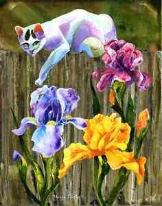 LILY-AMONG-THE-IRIS-Original-CAT-Art-Painting-Sherry-Shipley