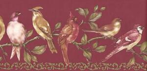 Wallpaper-Border-Birds-on-Green-Leaf-Vine-Red-Background