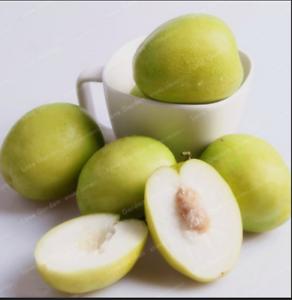 Jujube-Bonsai-Big-Fruit-Tree-Tropical-Fruit-10-Pcs-Seeds-Plants-Home-Garden-NEW