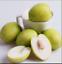 thumbnail 1 - Jujube-Bonsai-Big-Fruit-Tree-Tropical-Fruit-10-Pcs-Seeds-Plants-Home-Garden-NEW