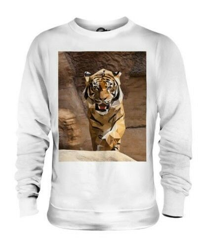 GEOMETRIC PATTERN TIGER UNISEX SWEATER TOP GIFT ANIMAL NATURE
