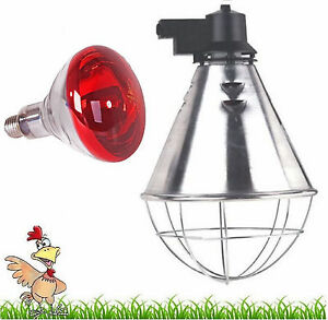 Infra Red Heat Lamp With Bulb Poultry Brooder Chicks Hatching Puppies Piglet Ebay