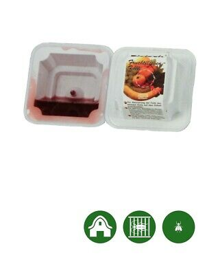 Biolock ® Mosche Frutta Trappola-caso Da Catturare Di Mosche Frutta (set - 6 Pezzi)-alle - Falle Zum Fangen Von Fruchtfliegen (set - 6 Stück) It-it