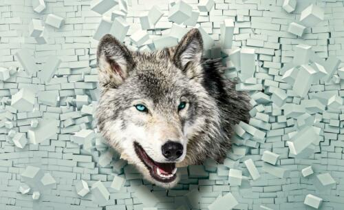 Fauna Fototapete Tapete Poster 043956FW Wolf kommt aus der Wand 3D  Tiere