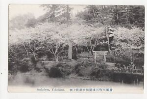 Sankeiyen-Yokohama-Japan-Vintage-Postcard-324a