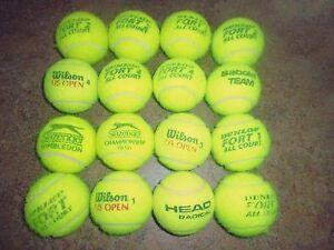 16 Premium Utilisé Balles De Tennis, Wilson, Head, Dunlop, Etc Grand Chien Jouets-afficher Le Titre D'origine