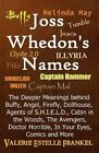 Joss Whedon's Names: The Deeper Meanings Behind Buffy, Angel, Firefly, Dollhouse, Agents of S.H.I.E.L.D., Cabin in the Woods, the Avengers, by Valerie Estelle Frankel (Paperback / softback, 2014)