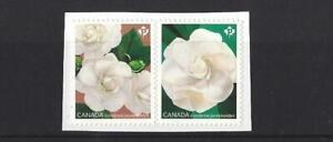 CANADA-2019-GARDENIA-FLOWERS-SELF-ADHESIVE-UNMOUNTED-MINT-MNH