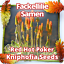 Fackellilie-Raketenblumen-Kniphofia-uvaria-30-Samen-Pack-mehrjaehrig Indexbild 2