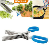 Stainless Steel 5 Shears Blade Cut Shredding Scissors Sharp Herb Kitchen Tool Us