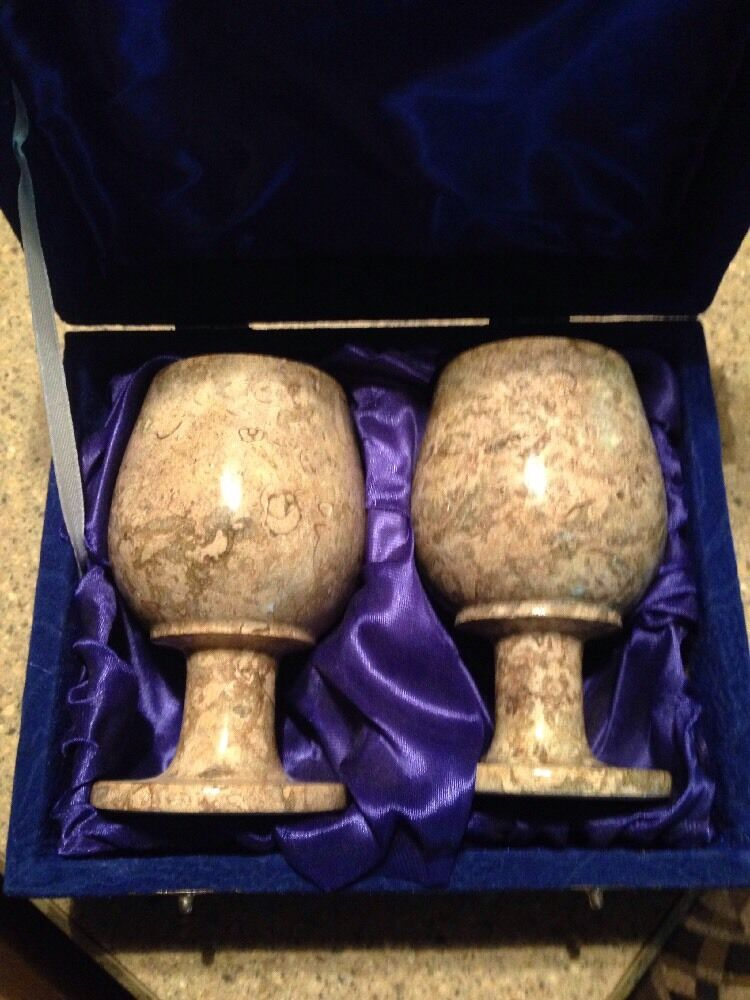 New Fossil Goblets Wine Glasses Shell 15-40 Million Years Gastropod 5  In Box
