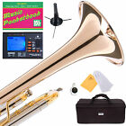 MENDINI Bb TRUMPET INTERMEDIATE/ADVANCED W/ MONEL VALVE +TUNER+CASE+STAND MTT-40