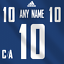 Vancouver-Canucks-Adidas-Jersey-Custom-Any-Name-Any-Number-Pro-Lettering-Kit miniature 1