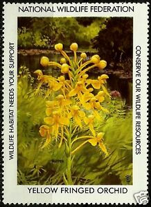 YELLOW-FRINGED-ORCHID-NATIONAL-WILDLIFE-FEDERATION-CINDERELLA-1984-MNH