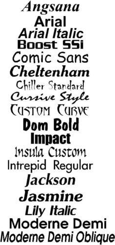 Custom Name Decal Sticker Triathlon Bike Road Decals