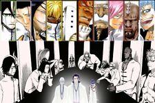 """Dead Rukia Ichigo Fight Japan Anime 27/""""x14/"""" Poster 146 Bleach"""