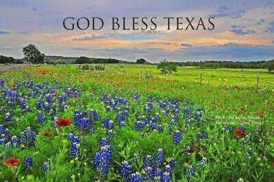Texas Treasures Resale